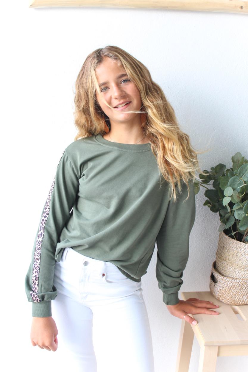 camisola barra animal verde seco