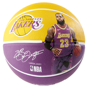 NBA Player Ball Lebron James