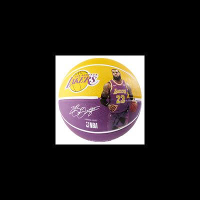 NBA Player Ball Lebron James