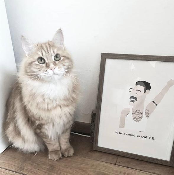 "Ilustração ""Freddie Mercury"""