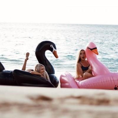 Insuflável Flamingo