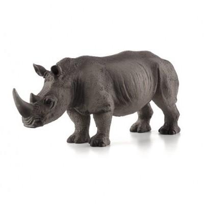 Rinoceronte Branco - XL