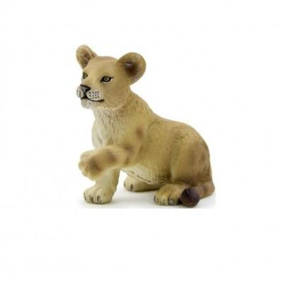 Leão filhote em pé - S