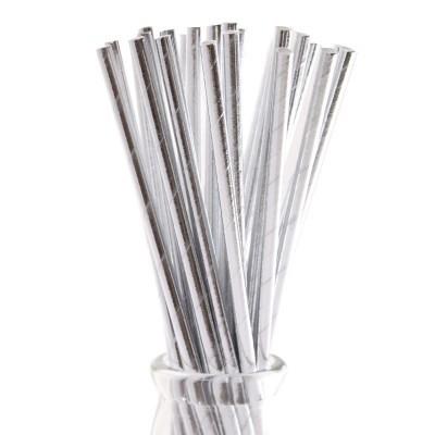 10 Palhinhas metal Prata