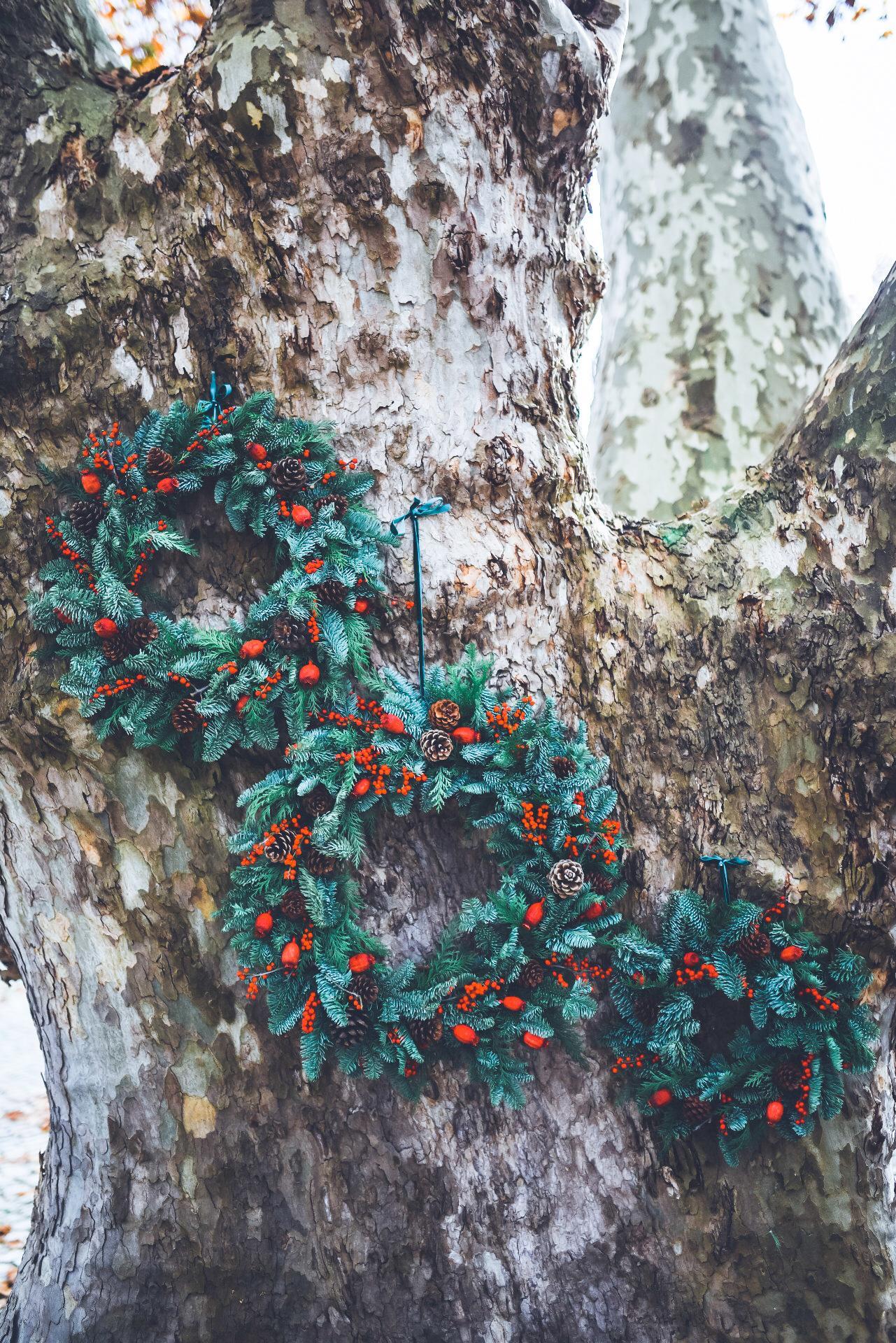 Coroa de Natal Branca