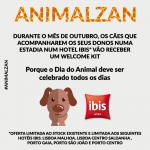 Cães recebem caixa de boas-vindas nos hotéis ibis