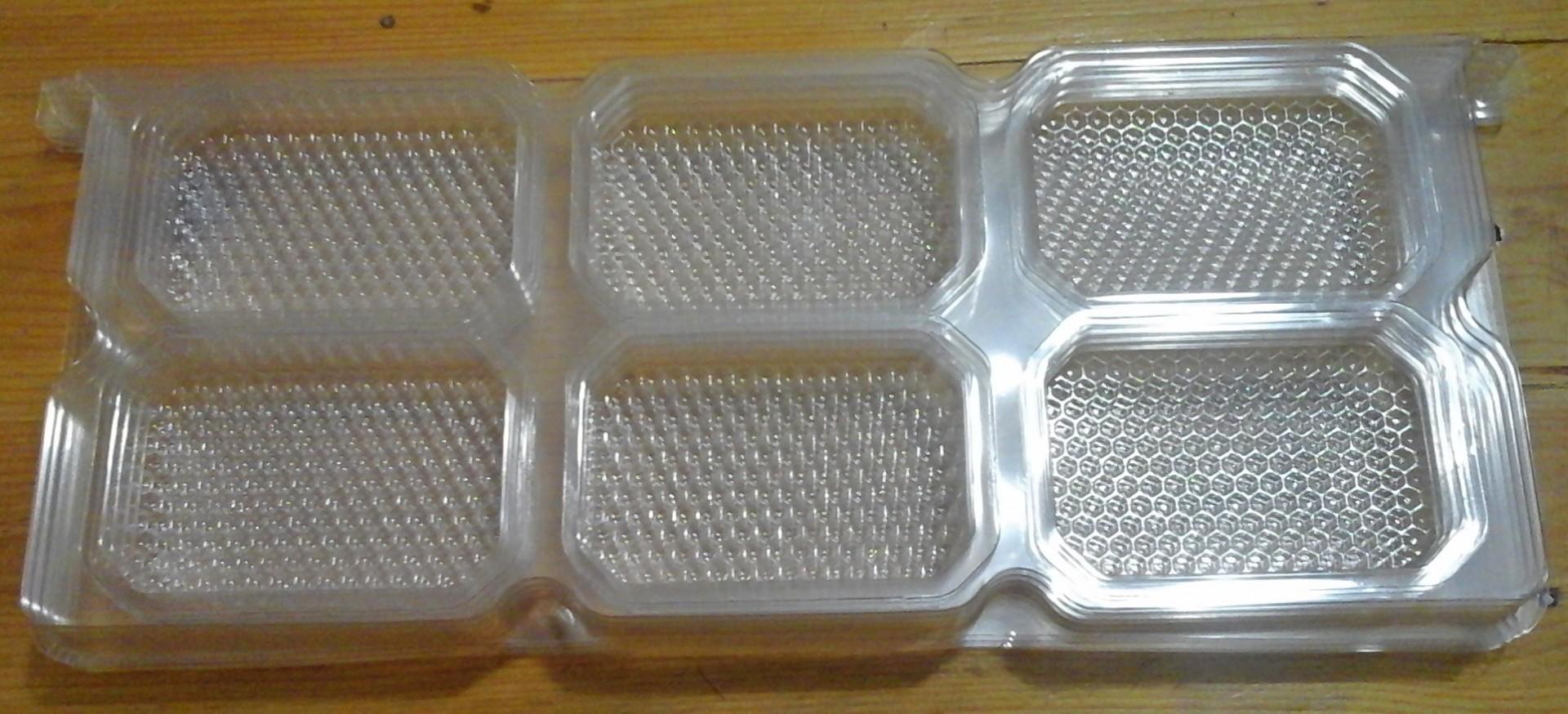 Quadro em plástico com 16 Secções Langstroth de Favo