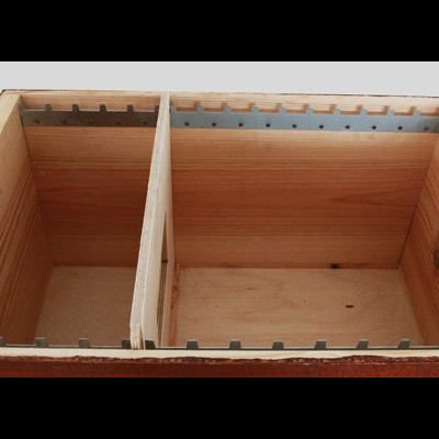 Colmeia Criadeira 15 quadros c/ Quadros s/ Cera