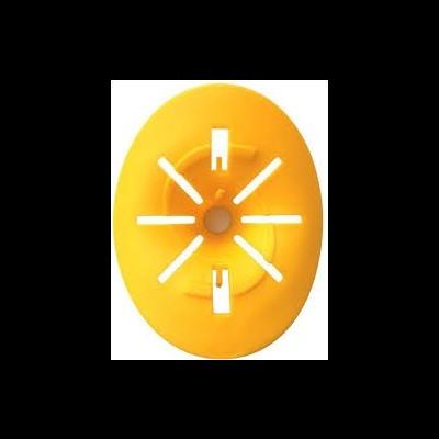 Armadilha vespa entrada amarela