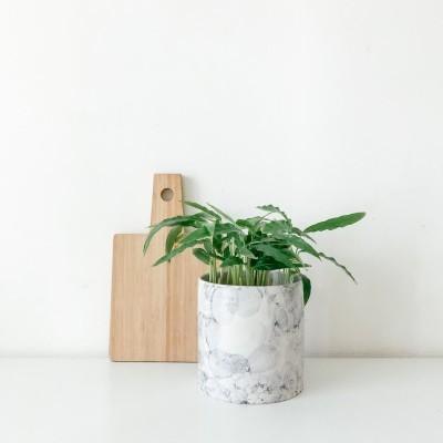 Pote /Vaso Bolhas Azul