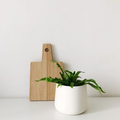 Pote/Vaso Branco Mate