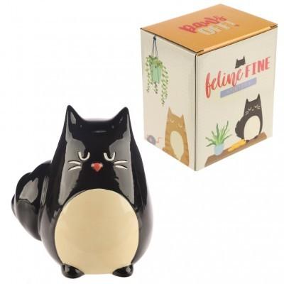 Mealheiro Gato preto