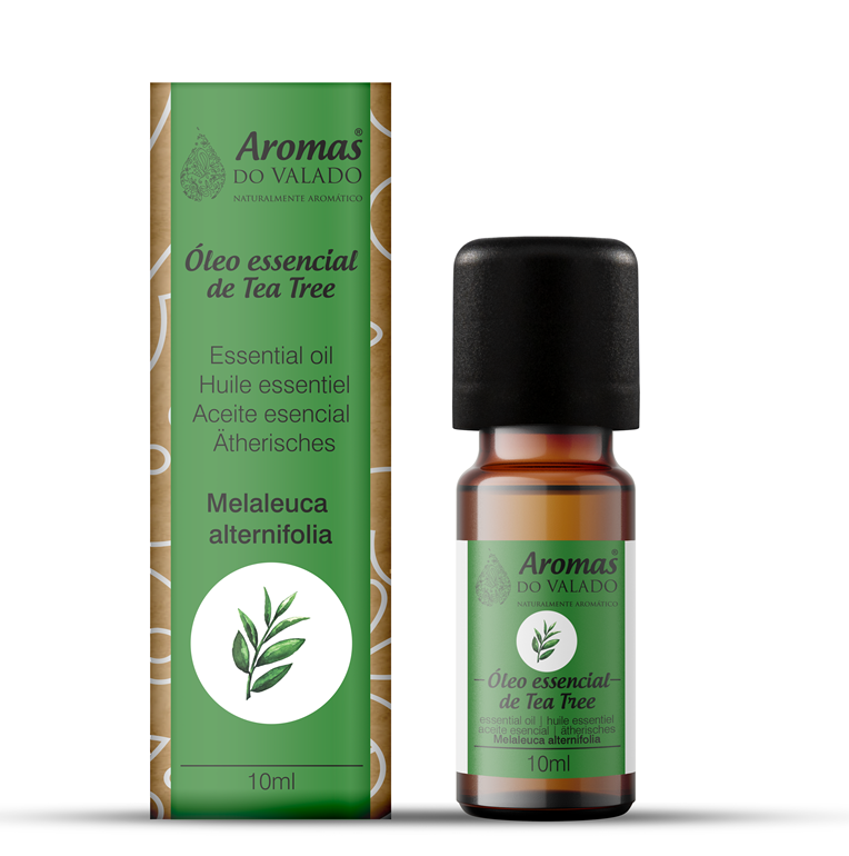 Oléo Essencial de Tea Tree 10 ml - Aromas do Valado