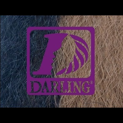 Darling Jumbo Braid - 2/30