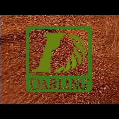 Darling Xpression - 350