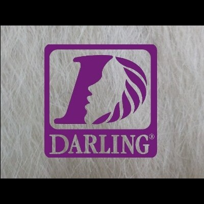 Darling Jumbo Braid - 220