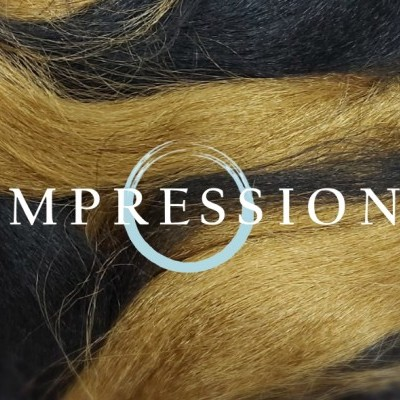 Impression Super Braid - 1B/27