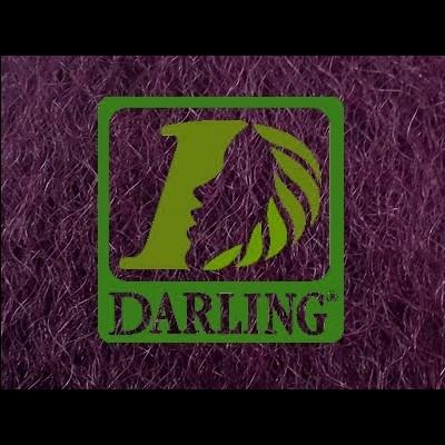 Darling Xpression - Violeta