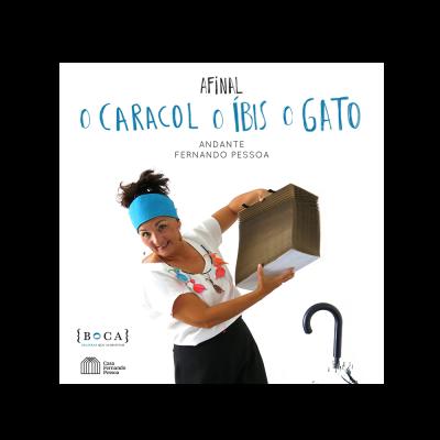 Afinal o Caracol, o Íbis, o Gato (ebook + mp3)