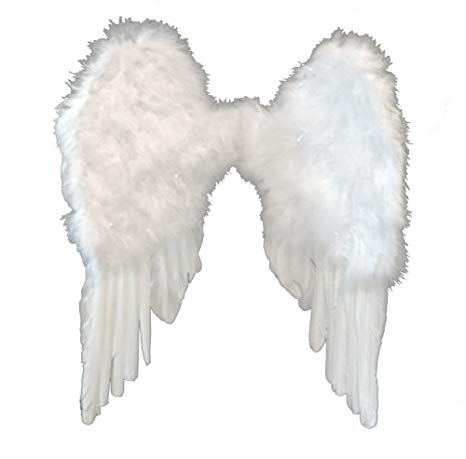 Asas de Anjo Penas Brancas