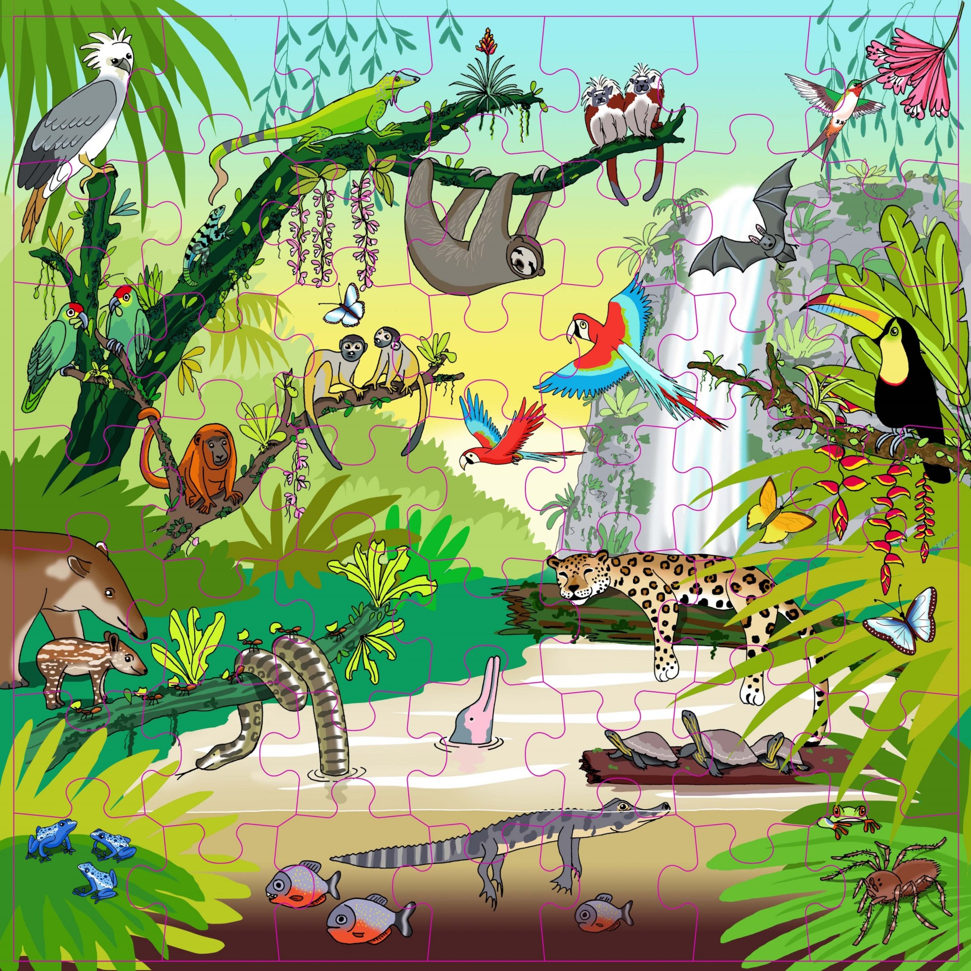 Floresta Tropical Puzzle Vocabulário