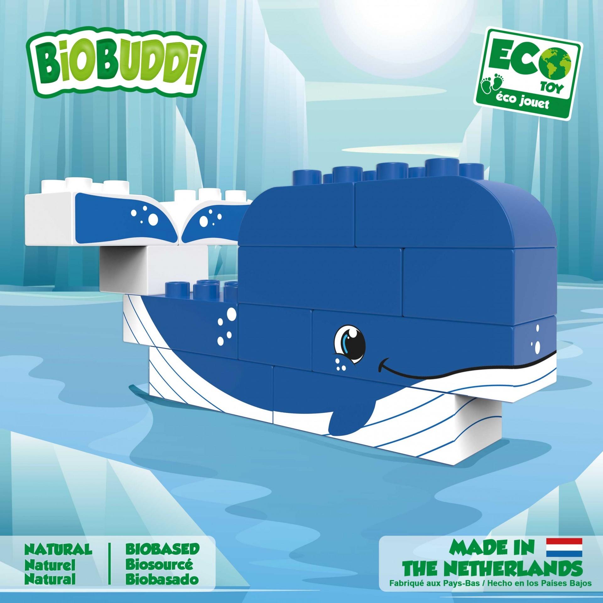 O Ártico - BioBuddi