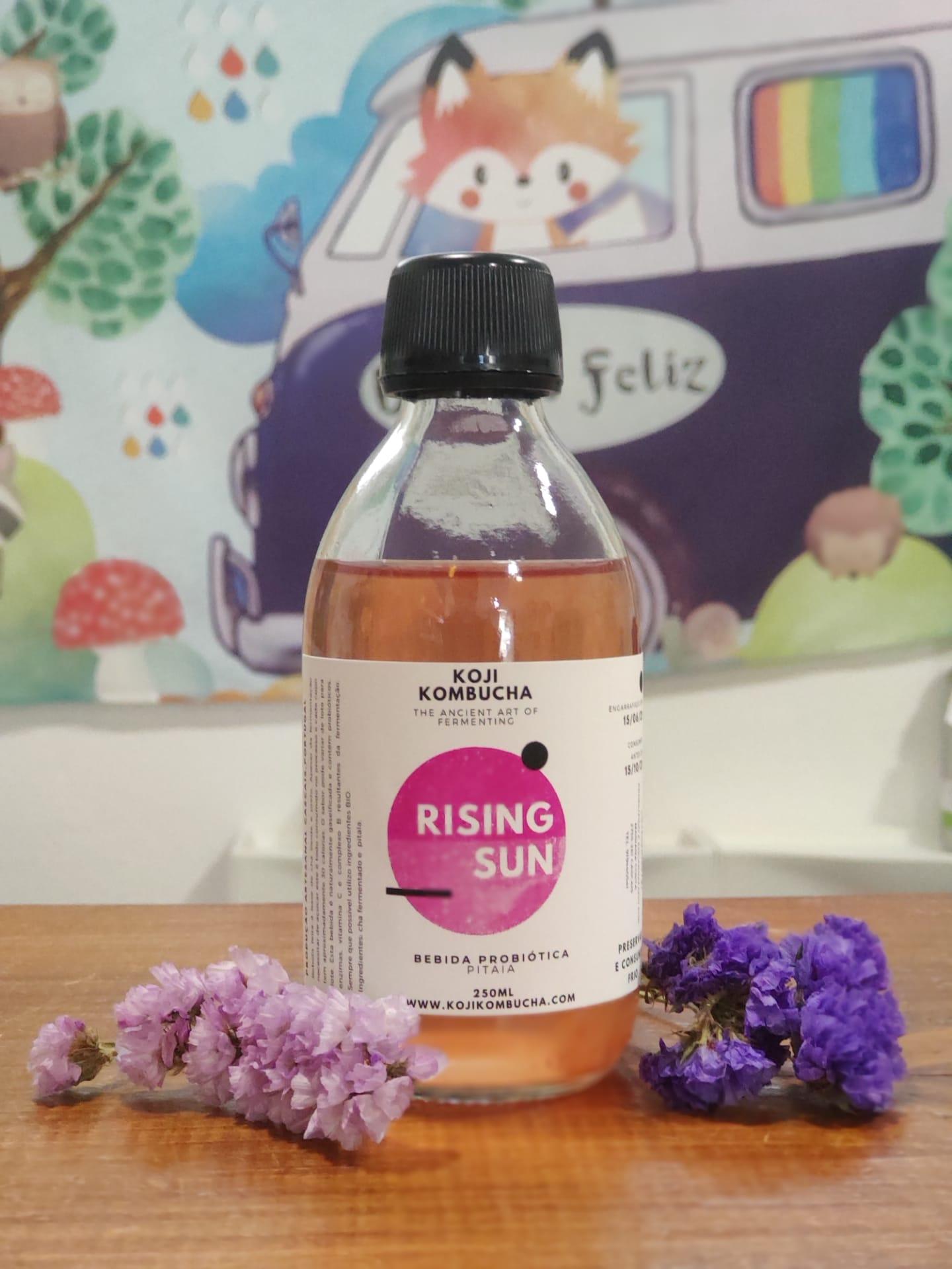 Rising Sun Kombucha | Koji