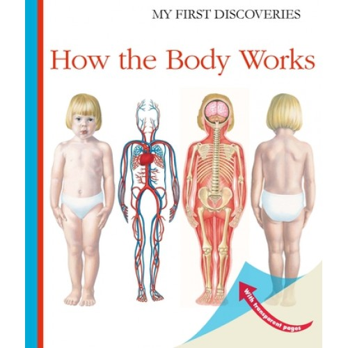 Como Funciona o Corpo - My First Discoveries