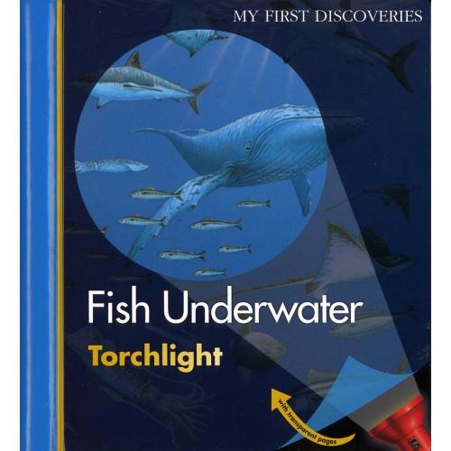 Peixe Debaixo de Água - My First Discoveries