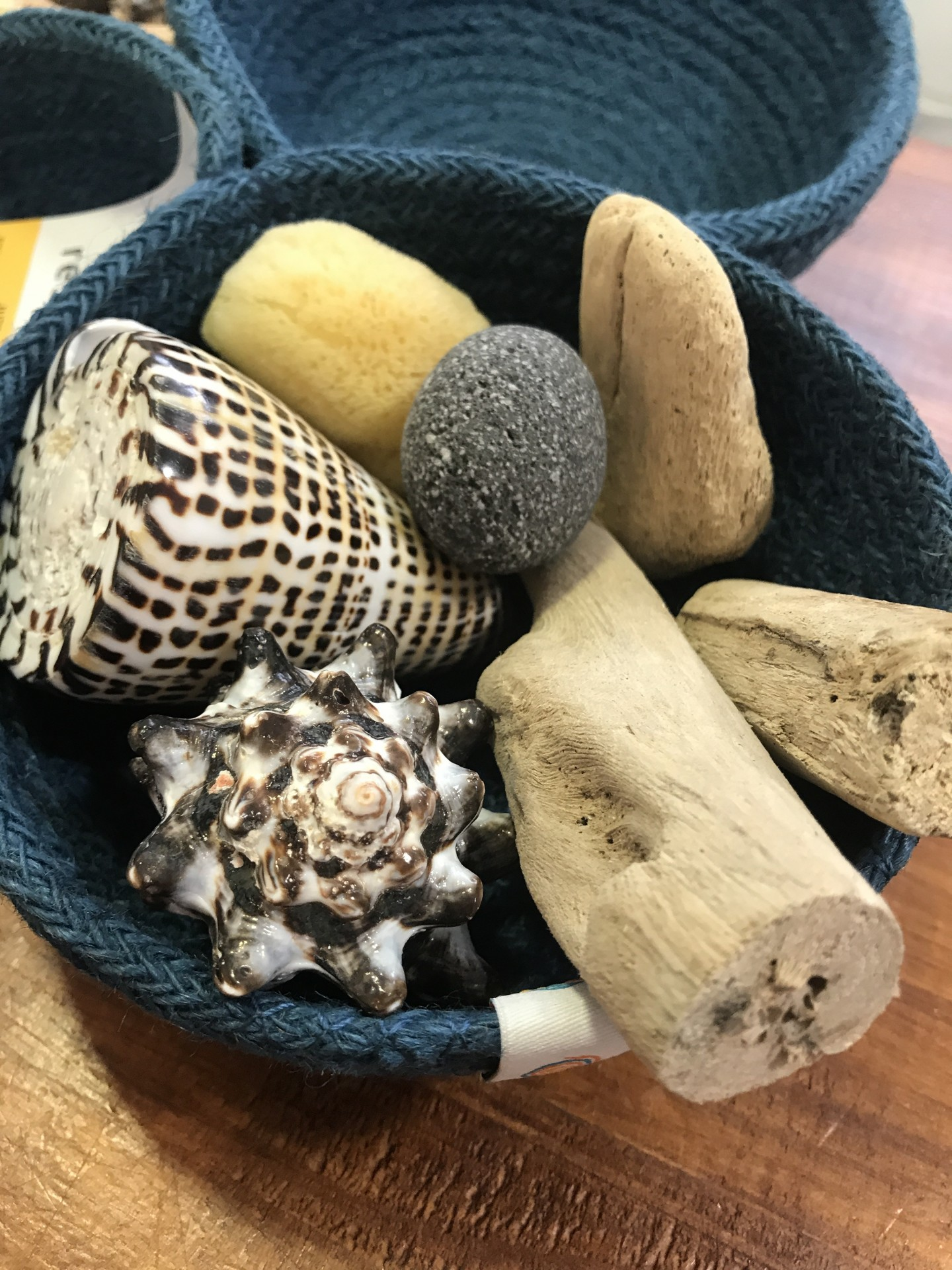 Conjunto Sensorial da Natureza | Bosque Feliz