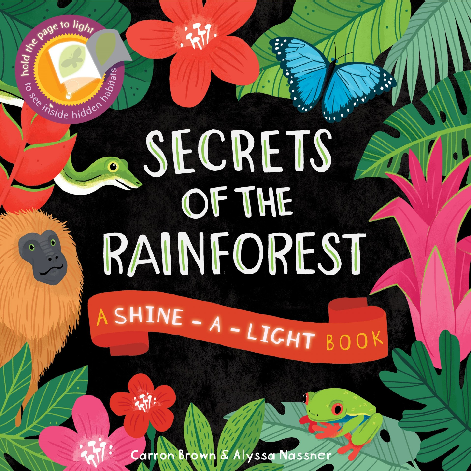 Secret of the Rain Forest | Shine a Light Book