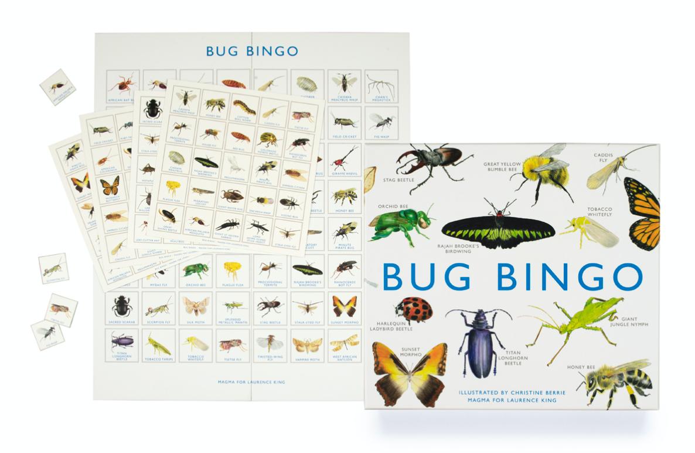 Bug Bingo | Bingo dos Insetos