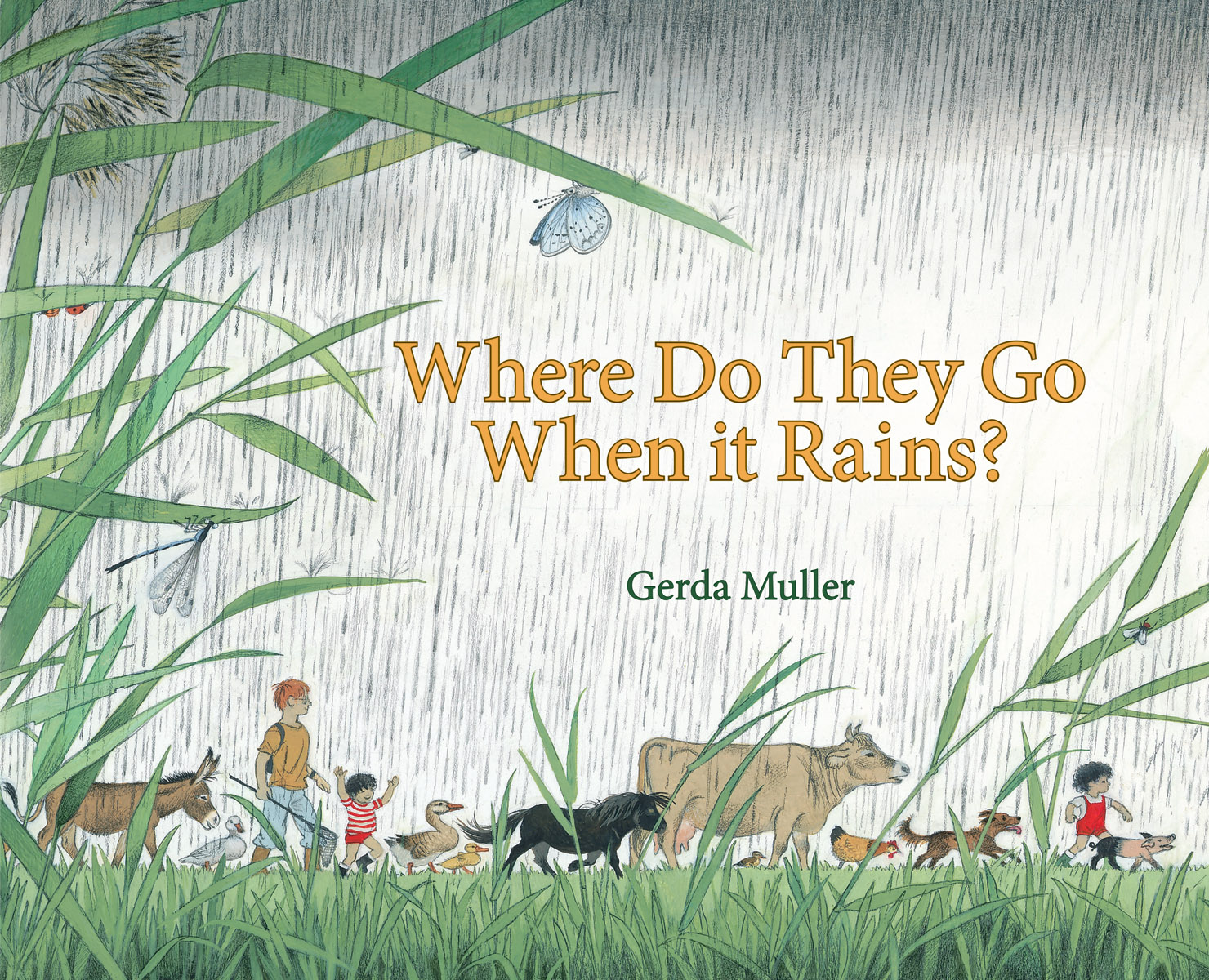 Where Do They Go When It Rains - Floris Books