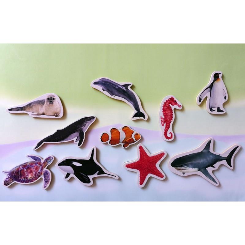 Animais Marinhos - Peças Magnéticas