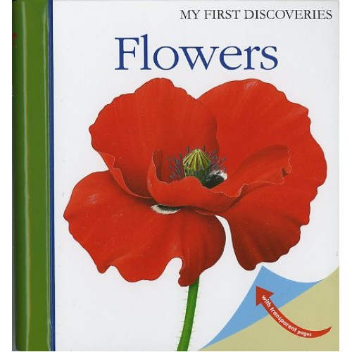 Flores - My First Discoveries