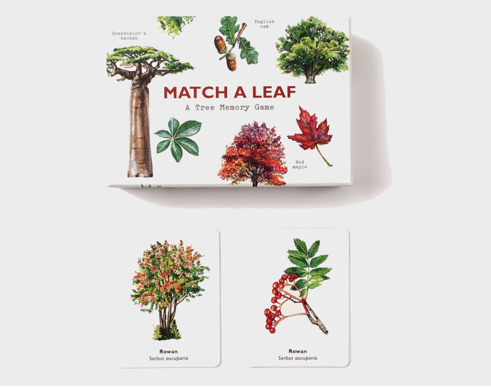 Match a Leaf | Combinar a Folha