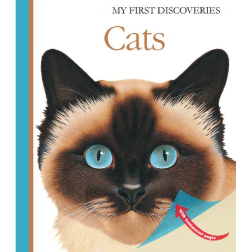 Gatos - My First Discoveries