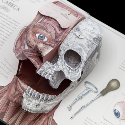 O Corpo Humano LIVRO Um Guia em Pop-Up sobre Anatomia