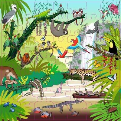 Floresta Tropical Puzzle Vocabulário