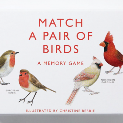 Match a Pair of Birds | Junte os Pares de Aves