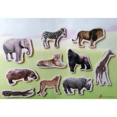 Animais Selvagens - Peças Magnéticas