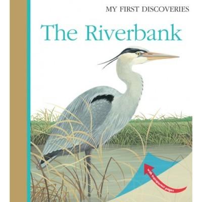 Ribeirinha - My First Discoveries