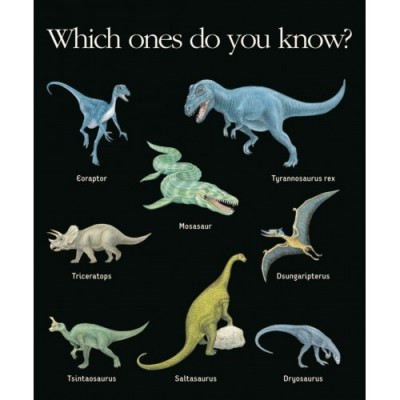 1ª Enciclopédia de Dinossauros - My First Discoveries