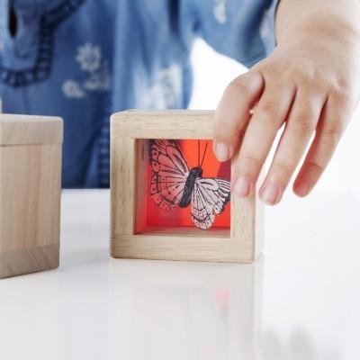 Caixa de Tesouros - Guidecraft