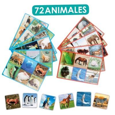 Loto: 72 Animais - Akros
