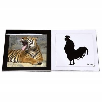 Imagier des Animaux