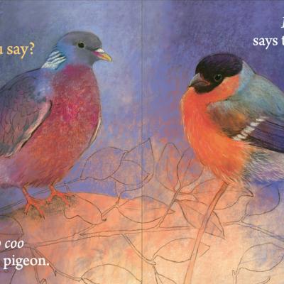 Hello Birds, What Do You Say? - Floris Books