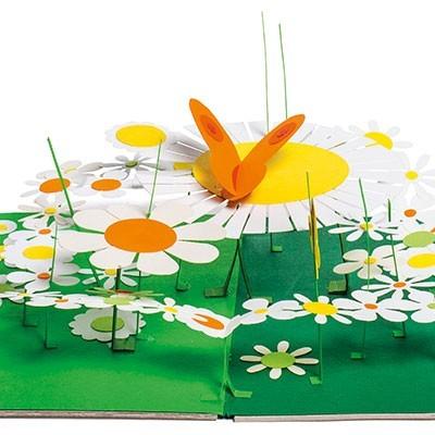 Le Jardin Des Papillons