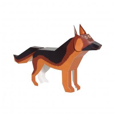 Cães - Pukaca