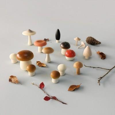 Cesto Cogumelos Selvagens